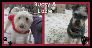 Bugsy & Lizzy